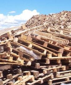 rifiuti legno - pallets