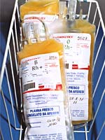 sacche di plasma